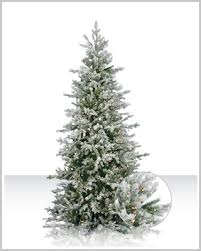discount frosted dunhill trees tree market