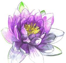 Purple Lily Flower 67 Lily Tattoos Ideas With Meaning