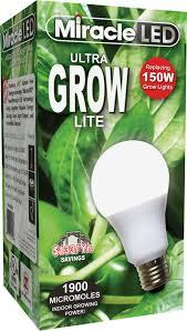 lights of america self ballasted l all light bulbs by walmart com