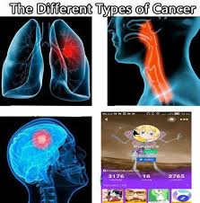 Different Types Of Memes - roastcurator2 dank memes amino