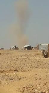 syrian desert stj