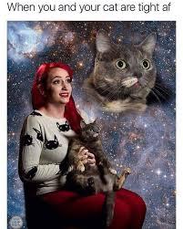 Cat Photo Album Cat Lady Life Album On Imgur