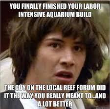 Meme Gallery - aquarium meme photo gallery aquanerd