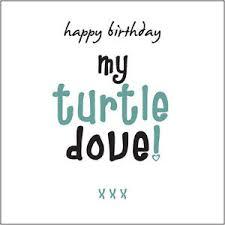 happy birthday my turtle dove