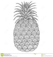 pineapple line art design stock vector image 66826453