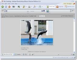 200 Photo Album Adobe Photoshop Album Download