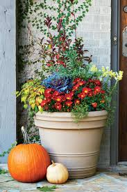 Winter Patio Plants by Fall Container Gardening Ideas Southern Living