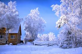 winter home winter day beautiful fence snow nature sunny white