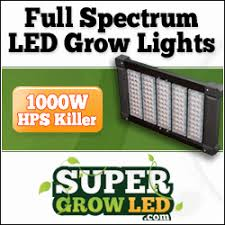 best light to grow pot marijuana grow lights led hps cfl