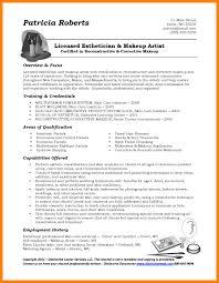 sample resume for it professionals super idea resume professional