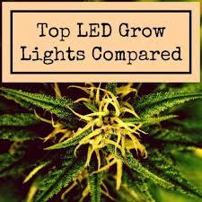 1000 watt led grow light reviews grow light reviews and info