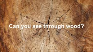wood you can see through youtube