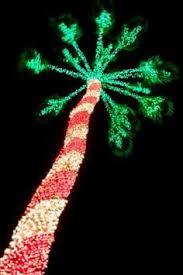 palm tree christmas tree lights lighted palm tree christmas tree coastal christmas and holidays