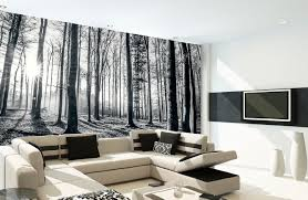 green forest wall mural wall murals ireland forest wall mural black white