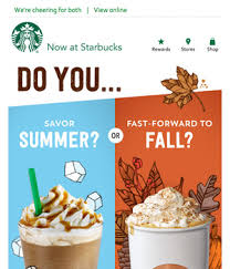 newsletter cuisine starbucks newsletter email gallery