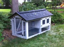 building my coop and carpenter is confusing me about ventilation