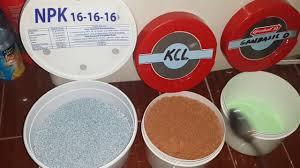 cara membuat cairan hidroponik membuat nutrisi hidroponik ab mix sendiri menggunakan pupuk npk kcl