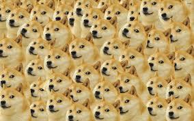 Doge Meme Wallpaper - doge wallpapers album on imgur
