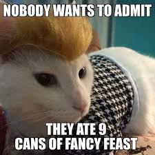 Fancy Feast Meme - bubbles kitties have been hanging around ricky too much i d say