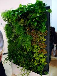 greenworks self watering living wall system beautiful green
