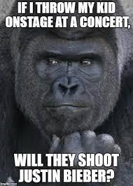 Handsome Meme - handsome gorilla memes imgflip