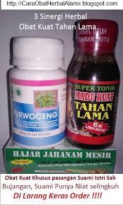 obat herbal tradisional cara alami agar pria kuat tahan lama