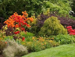 Botanical Gardens Seattle Soos Creek Botanical Garden Seattle And Sound