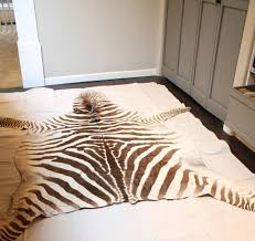 Zebra Area Rugs Zebra Area Rug 50 Photos Home Improvement