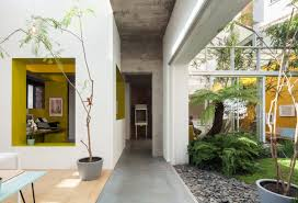 8 modern homes with lush indoor plants dwell interior courtyard