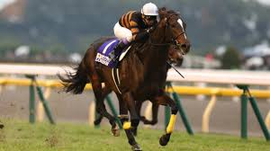 kitasan black beats maurice for 2016 japan horse of the year