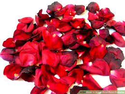 Where Can I Buy Rose Petals How To Make Rose Petal Perfume 8 Steps With Pictures Wikihow