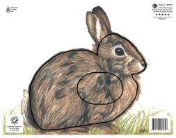 paper rabbit archery target