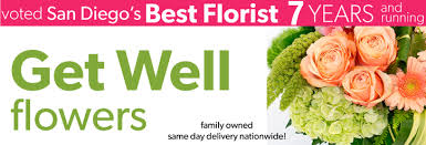 Same Day Delivery Gifts Get Well Flowers Get Well Gifts Get Well Plants Ideas For Get
