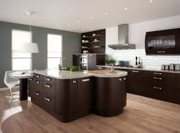 Best Paint For Cabinets Best Paint Color For Kitchen With Dark Cabinets Everdayentropy Com