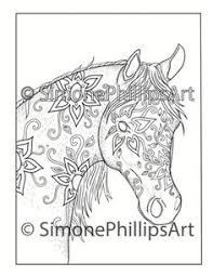 wonderful horses coloring colouring book