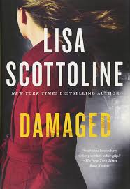 damaged a rosato u0026 dinunzio novel lisa scottoline 9781250099624