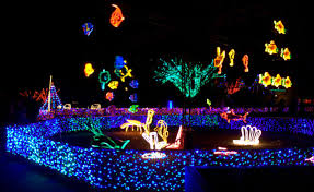 oregon zoo lights 2017 7 magical light displays in portland that will simply mesmerize you