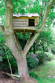 cool tree houses top 5 cool tree houses your kids would love to have