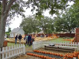 Pumpkin Patch Frisco Tx by Heritage Farmstead Museum Of Plano Opens Pumpkin Patch And Hay
