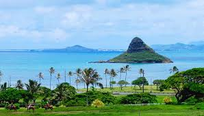 Hawaii natural attractions images Visit one of the best oahu attractions kualoa ranch jpg