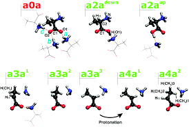 solved the reductive radiation chemistry of alanine physical