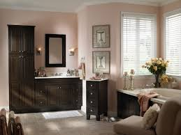 Dark Bathroom Ideas by Bathroom Enchanting Dark Bathroom Vanities Ikea With Mirrored