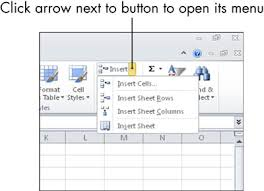 for seniors how to insert and delete rows and columns in an excel