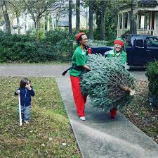 king of pops sends elves to deliver trees to your door