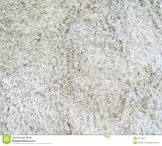 White Carpet With Long Pile Stock Photography Image 30770832