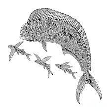 mahi with flying fish drawing by carol lynne