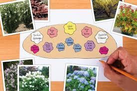 All Year Flowering Shrubs - garden design for flowering shrubs