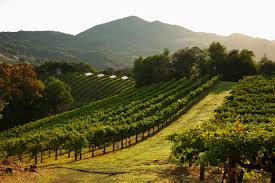 french wine makers purchase napa valley luxury estate robert