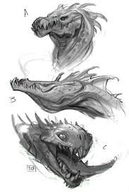 dragon sketches taylor fischer on artstation at https www