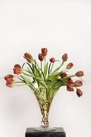 Arrangments In Bloom Dorothy Mcdaniel U0027s Flower Market